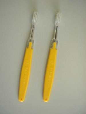 Soladey Eco Yellow Brush_Low Res_327 KB.JPG